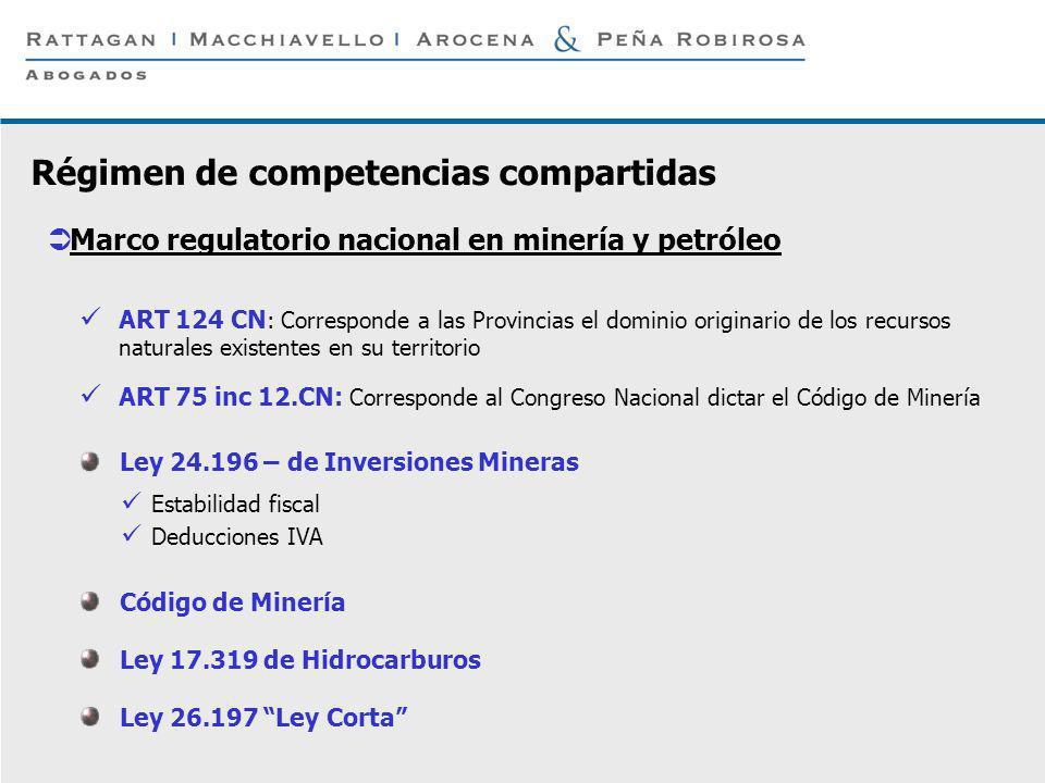 P 3 © Rattagan Macchiavello Arocena & Peña Robirosa, 2005 ART 124 CN : Corresponde a las Provincias el dominio originario de los recursos naturales ex