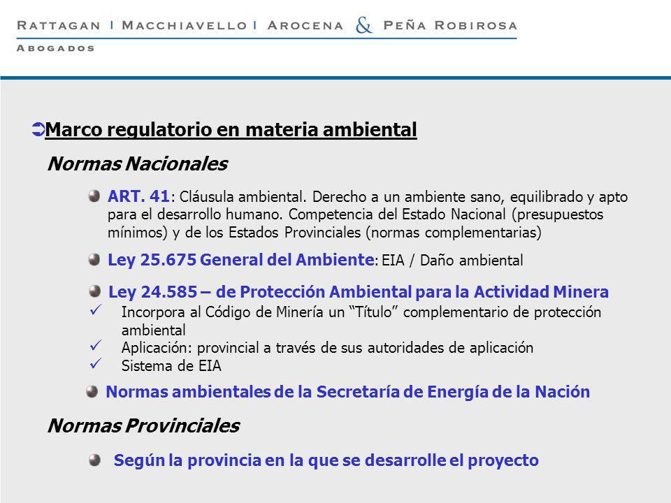 P 4 © Rattagan Macchiavello Arocena & Peña Robirosa, 2005 Incorpora al Código de Minería un Título complementario de protección ambiental Aplicación: