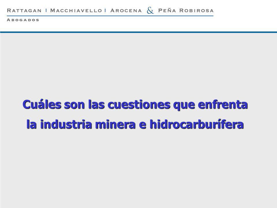 P 5 © Rattagan Macchiavello Arocena & Peña Robirosa, 2005 Cuáles son las cuestiones que enfrenta la industria minera e hidrocarburífera