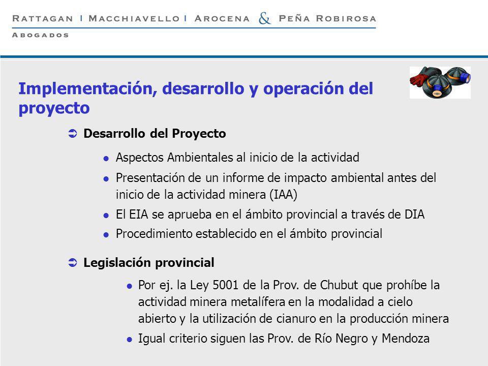 P 6 © Rattagan Macchiavello Arocena & Peña Robirosa, 2005 Desarrollo del Proyecto Aspectos Ambientales al inicio de la actividad Presentación de un in