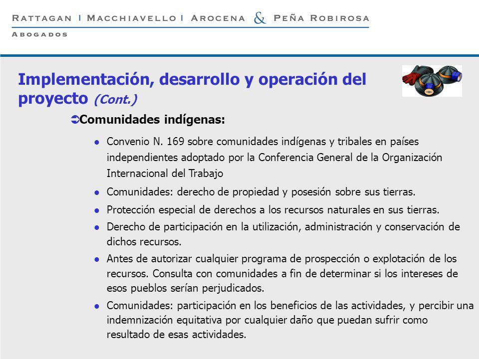 P 9 © Rattagan Macchiavello Arocena & Peña Robirosa, 2005 Implementación, desarrollo y operación del proyecto (Cont.) Comunidades indígenas: Convenio