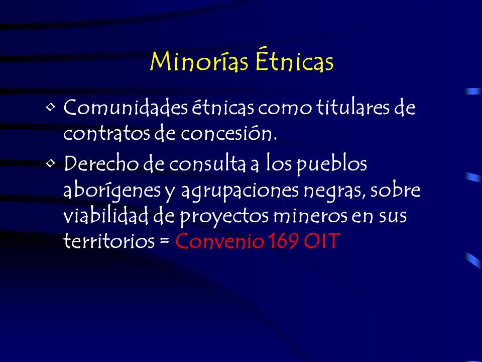Minorías Étnicas Comunidades étnicas como titulares de contratos de concesión. Derecho de consulta a los pueblos aborígenes y agrupaciones negras, sob