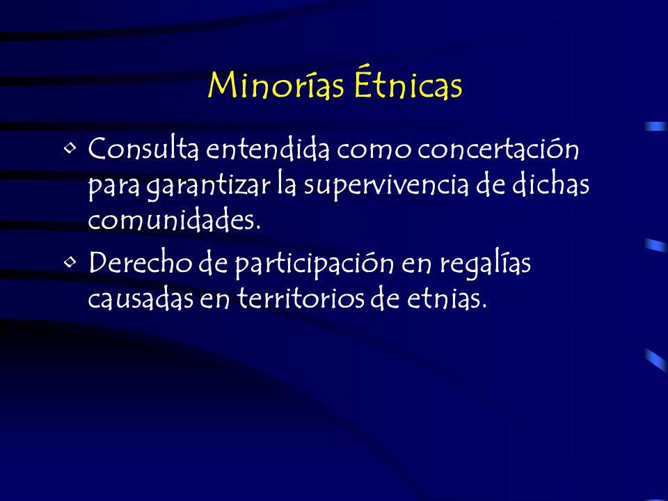 Minorías Étnicas Consulta entendida como concertación para garantizar la supervivencia de dichas comunidades. Derecho de participación en regalías cau