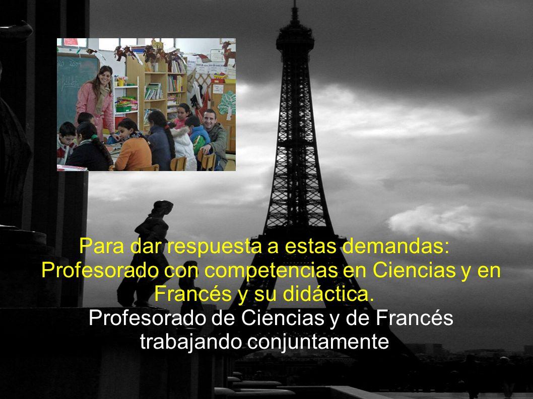Trabajo con el aula: Durante las clases de Ciencias se empleó siempre el francés como lenguaje de aula, hablando despacio y vocalizando.