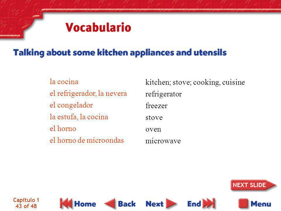 Capítulo 1 43 of 48 la cocina el refrigerador, la nevera el congelador la estufa, la cocina el horno el horno de microondas kitchen; stove; cooking, c