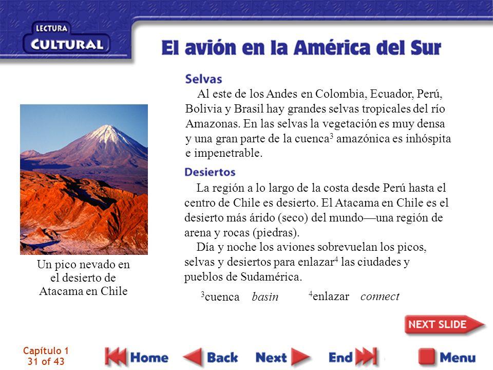 Capítulo 1 31 of 43 Al este de los Andes en Colombia, Ecuador, Perú, Bolivia y Brasil hay grandes selvas tropicales del río Amazonas. En las selvas la
