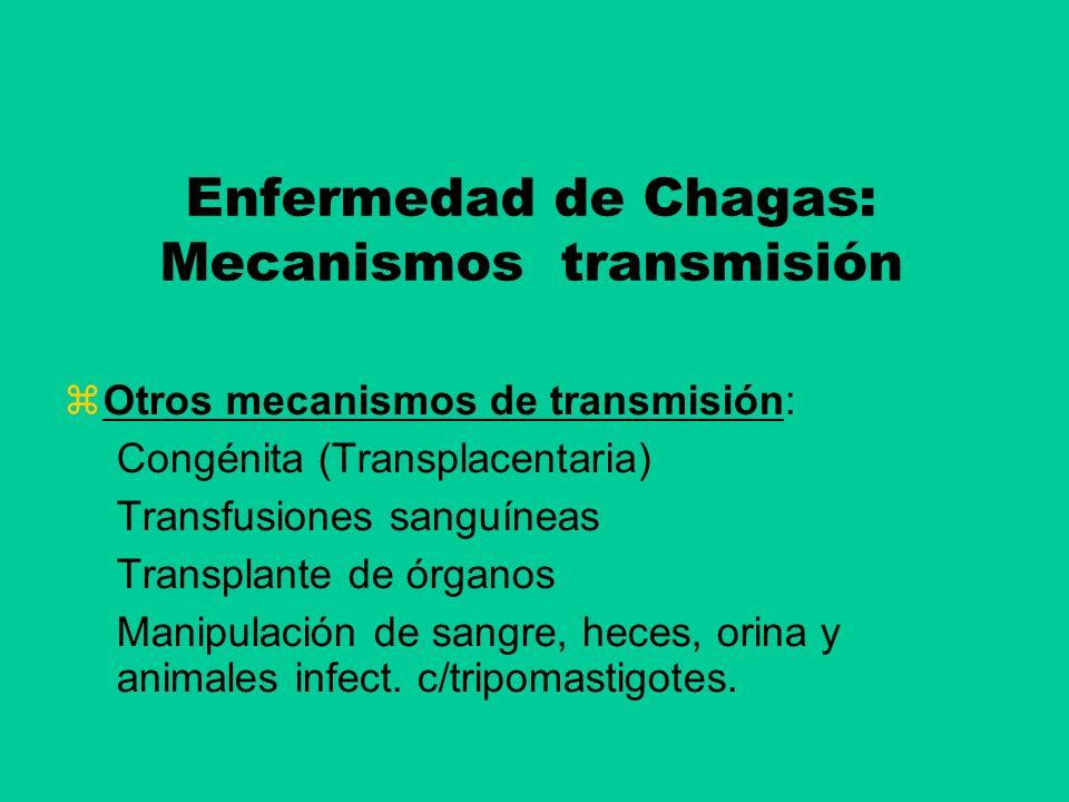 Enfermedad de Chagas: Mecanismos transmisión Otros mecanismos de transmisión: Congénita (Transplacentaria) Transfusiones sanguíneas Transplante de órg