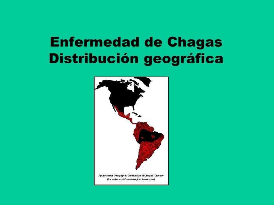 Enfermedad de Chagas: Mecanismos transmisión Otros mecanismos de transmisión: Congénita (Transplacentaria) Transfusiones sanguíneas Transplante de órganos Manipulación de sangre, heces, orina y animales infect.