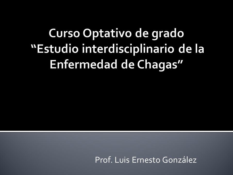 Definición Vías de infección Evolución clínica Teorías sobre la enfermedad-grados de evolución - Sintomatología Chagas agudo Chagas crónico asintomático Chagas crónico sintomático.