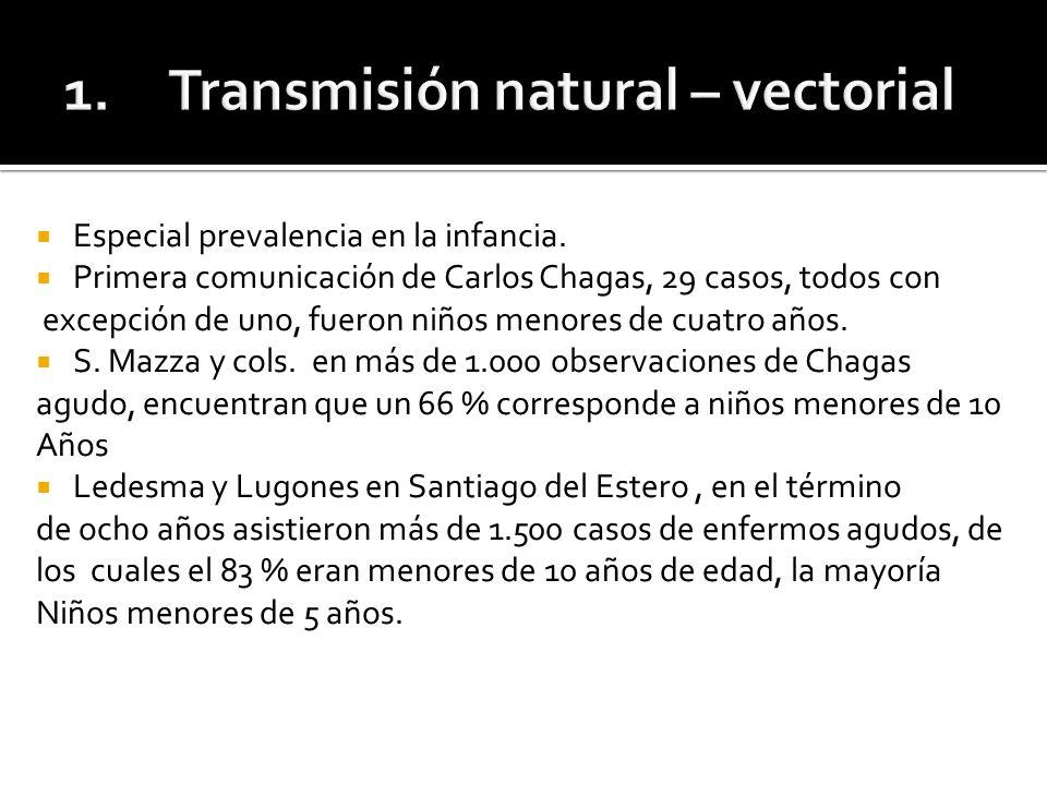 Enfermedad de Chagas en Pediatría Dra.María E. Reyes Fernández CHAGAS AGUDO VECTORIAL Dr.