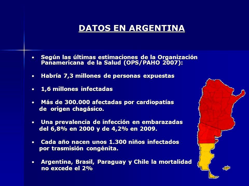 DATOS EN ARGENTINA Según las últimas estimaciones de la Organización Panamericana de la Salud (OPS/PAHO 2007): Según las últimas estimaciones de la Or