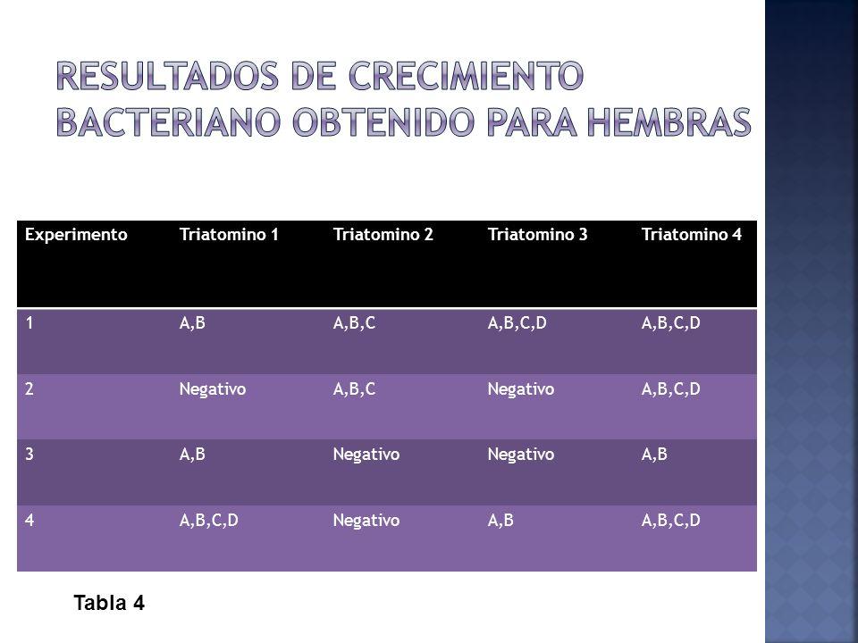 ExperimentoTriatomino 1Triatomino 2Triatomino 3Triatomino 4 1A,BA,B,CA,B,C,D 2NegativoA,B,CNegativoA,B,C,D 3A,BNegativo A,B 4A,B,C,DNegativoA,BA,B,C,D