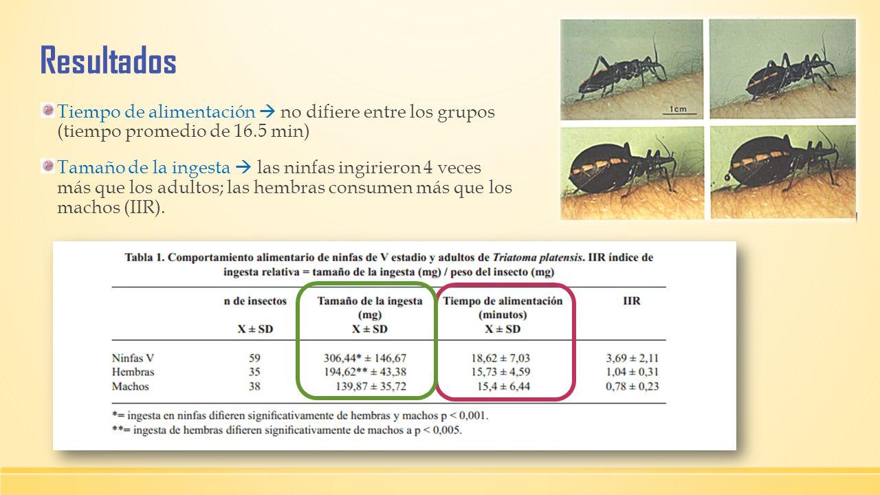 Resultados Tiempo de alimentación no difiere entre los grupos (tiempo promedio de 16.5 min) Tamaño de la ingesta las ninfas ingirieron 4 veces más que