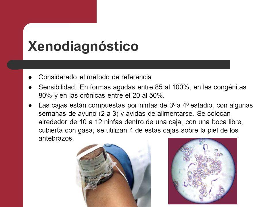 Hemocultivo Consiste en sembrar una muestra de sangre en un medio de cultivo artificial y amplificar el número de parásitos.