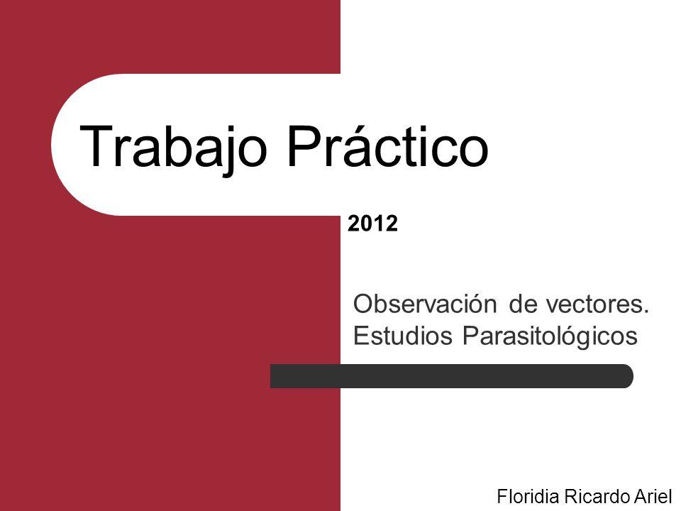 Trabajo Práctico Observación de vectores. Estudios Parasitológicos Floridia Ricardo Ariel 2012