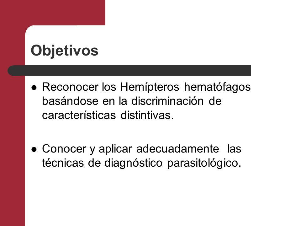 Objetivos Reconocer los Hemípteros hematófagos basándose en la discriminación de características distintivas. Conocer y aplicar adecuadamente las técn