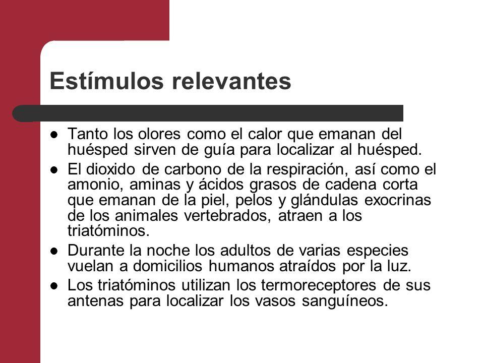 Estímulos relevantes Tanto los olores como el calor que emanan del huésped sirven de guía para localizar al huésped. El dioxido de carbono de la respi