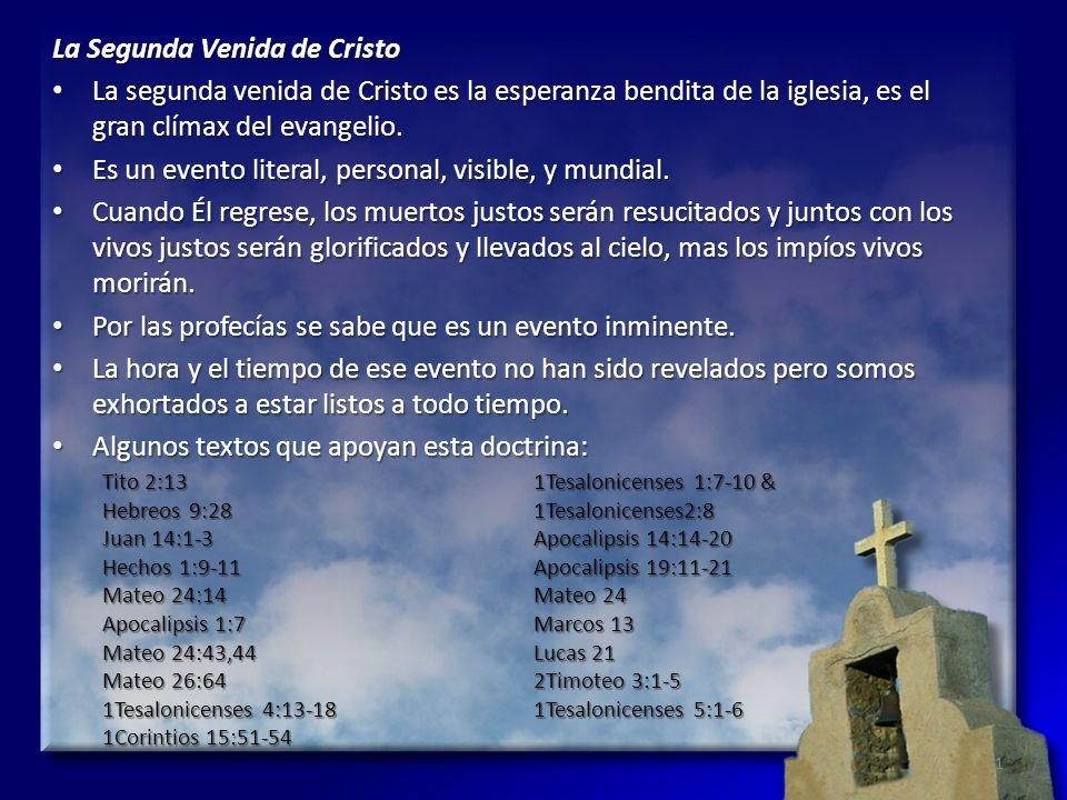 La Segunda Venida de Cristo La segunda venida de Cristo es la esperanza bendita de la iglesia, es el gran clímax del evangelio. La segunda venida de C