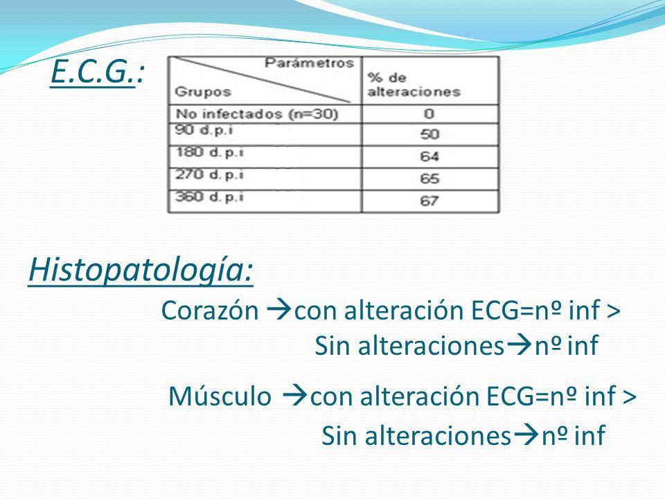 E.C.G.: Histopatología: Corazón con alteración ECG=nº inf > Sin alteraciones nº inf Músculo con alteración ECG=nº inf > Sin alteraciones nº inf