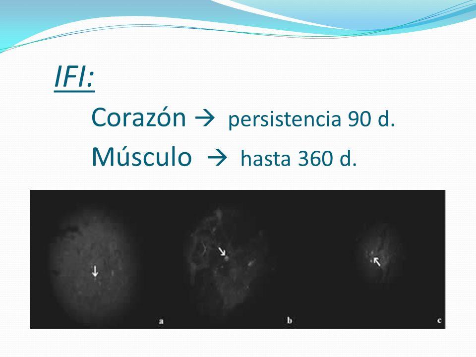 IFI: Corazón persistencia 90 d. Músculo hasta 360 d.