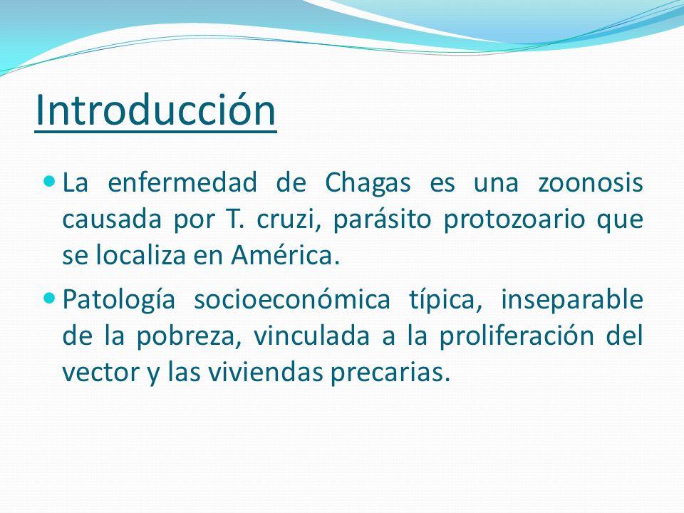 Introducción La enfermedad de Chagas es una zoonosis causada por T. cruzi, parásito protozoario que se localiza en América. Patología socioeconómica t