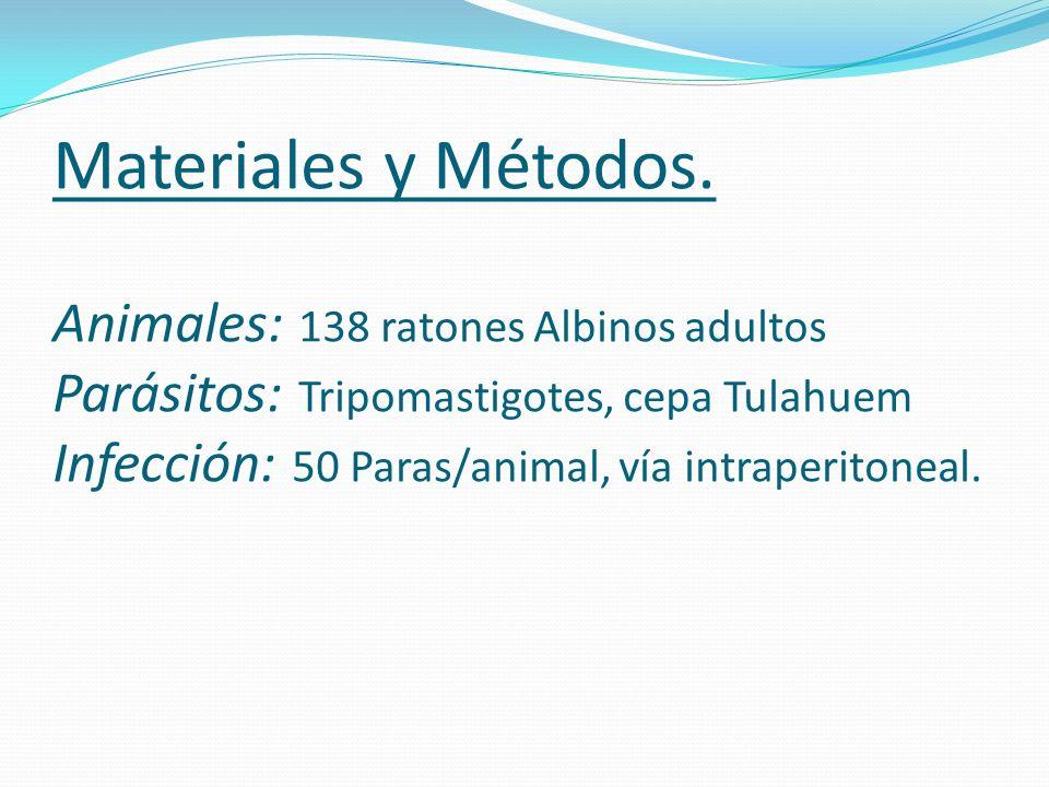 Materiales y Métodos. Animales: 138 ratones Albinos adultos Parásitos: Tripomastigotes, cepa Tulahuem Infección: 50 Paras/animal, vía intraperitoneal.