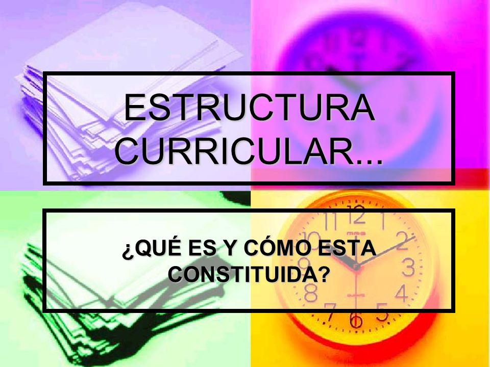 ESTRUCTURA CURRICULAR La Estructura Curricular es el conjunto de competencias que desarrollara el aprendiz en el proceso formativo en una especialidad determinada.