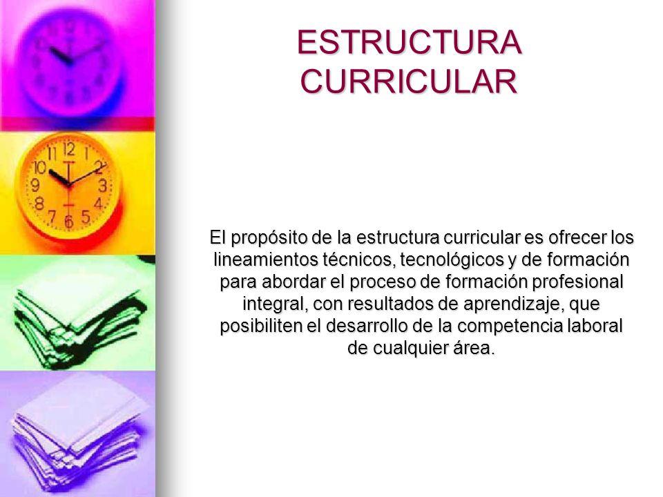 ESTRUCTURA CURRICULAR El propósito de la estructura curricular es ofrecer los lineamientos técnicos, tecnológicos y de formación para abordar el proce