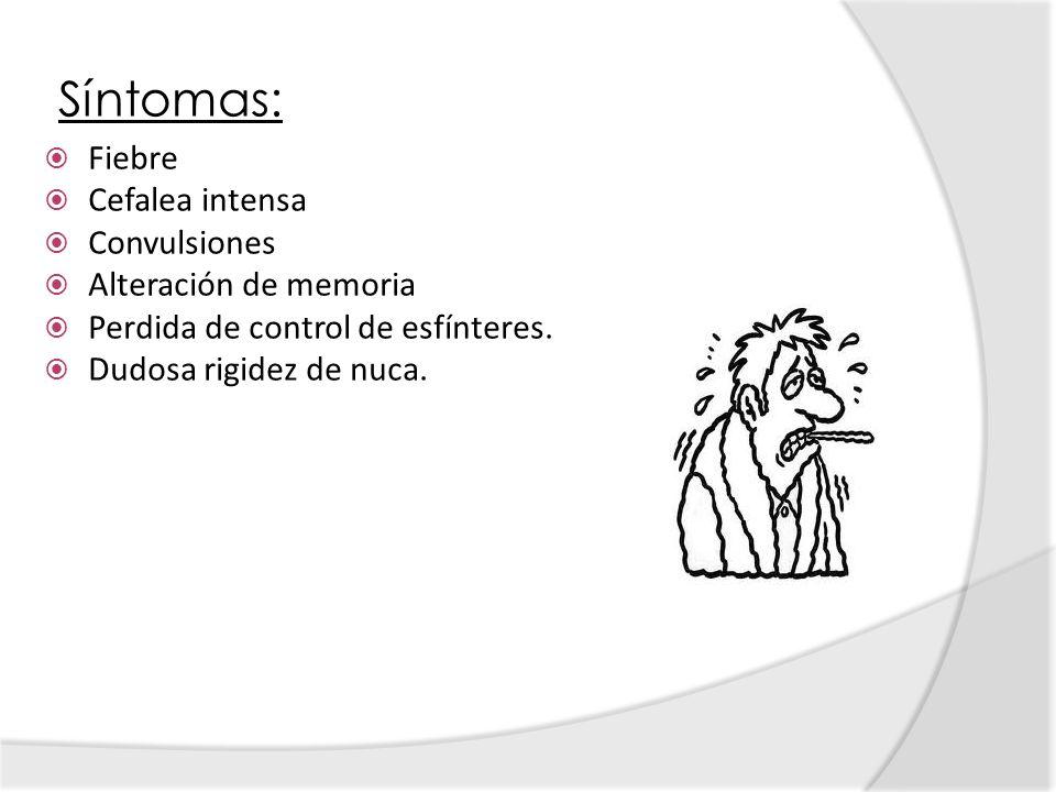 Síntomas: Fiebre Cefalea intensa Convulsiones Alteración de memoria Perdida de control de esfínteres. Dudosa rigidez de nuca.