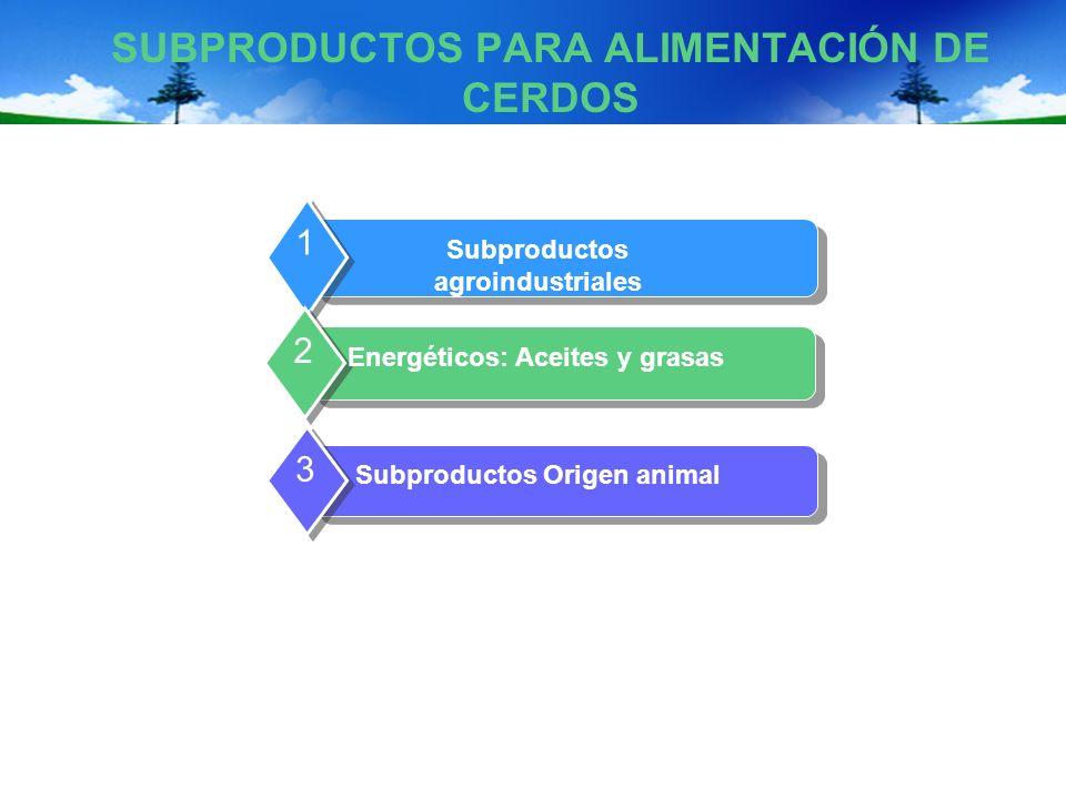 SUBPRODUCTOS PARA ALIMENTACIÓN DE CERDOS Subproductos agroindustriales 1 Energéticos: Aceites y grasas 2 Subproductos Origen animal 3