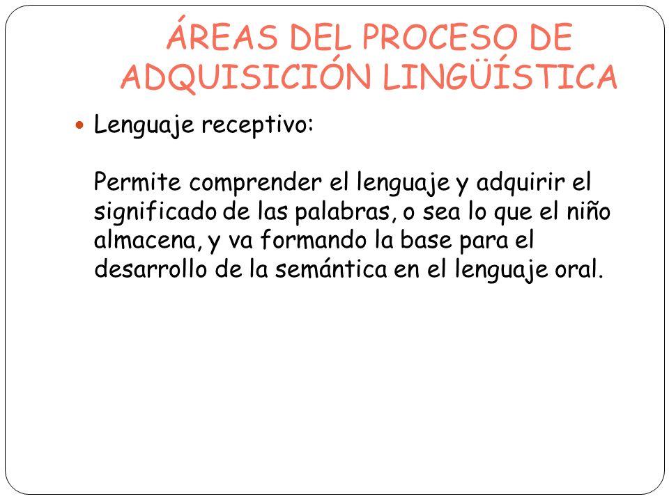 ÁREAS DEL PROCESO DE ADQUISICIÓN LINGÜÍSTICA Lenguaje receptivo: Permite comprender el lenguaje y adquirir el significado de las palabras, o sea lo qu