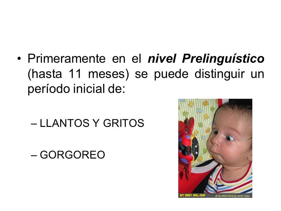 Primeramente en el nivel Prelinguístico (hasta 11 meses) se puede distinguir un período inicial de: –LLANTOS Y GRITOS –GORGOREO