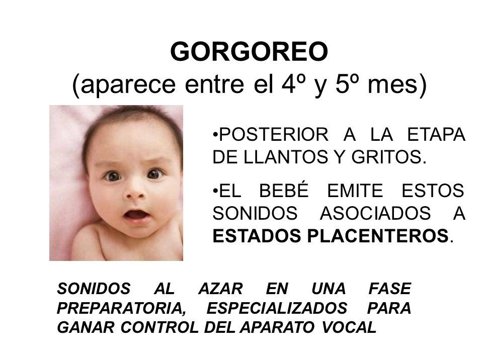 GORGOREO (aparece entre el 4º y 5º mes) POSTERIOR A LA ETAPA DE LLANTOS Y GRITOS. EL BEBÉ EMITE ESTOS SONIDOS ASOCIADOS A ESTADOS PLACENTEROS. SONIDOS
