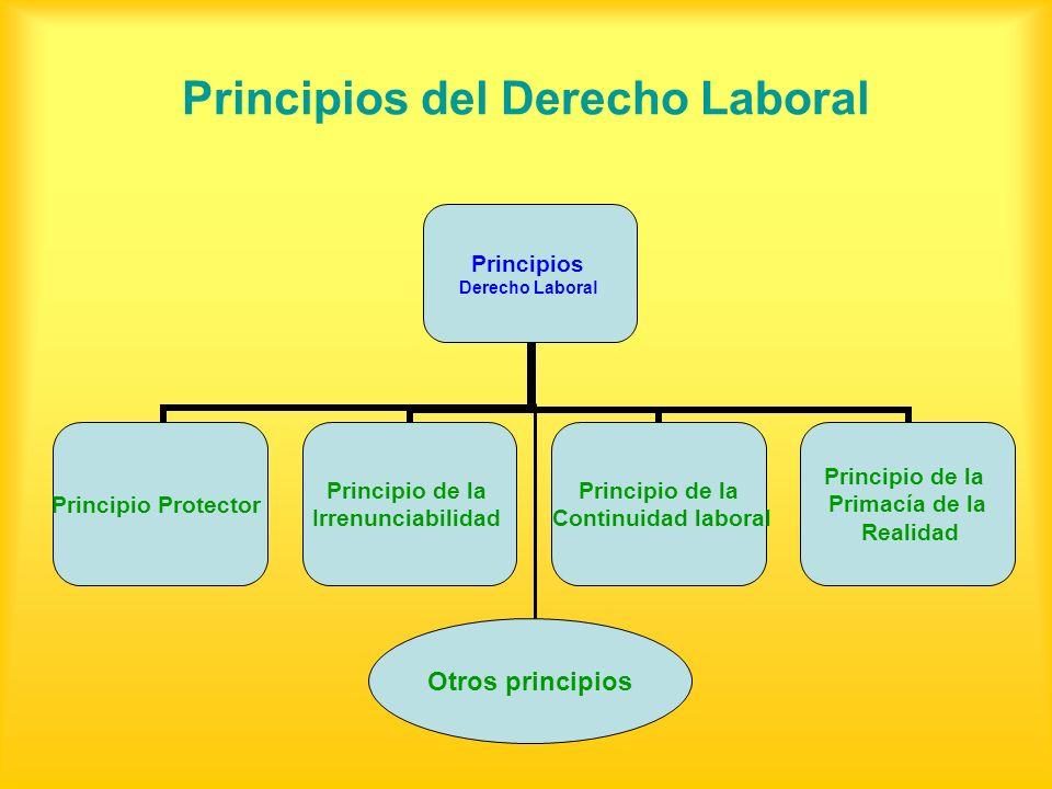 Principios del Derecho Laboral Principios Derecho Laboral Principio Protector Principio de la Irrenunciabilidad Principio de la Continuidad laboral Pr