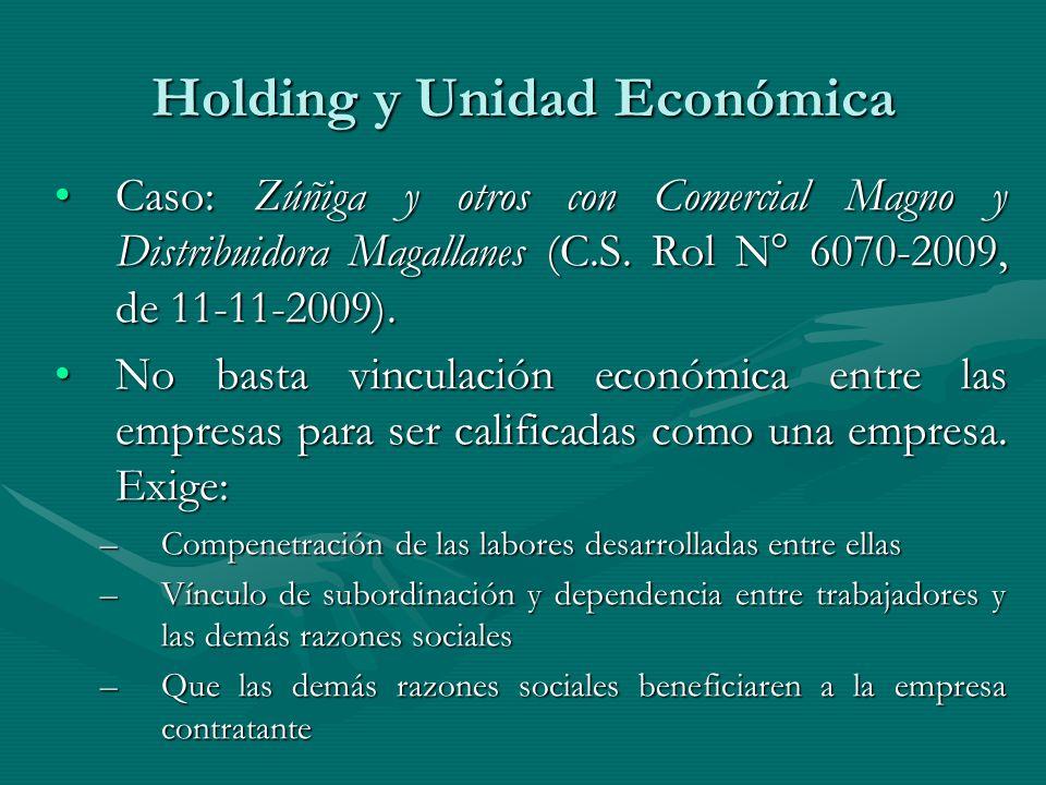Holding y Unidad Económica Caso: Zúñiga y otros con Comercial Magno y Distribuidora Magallanes (C.S. Rol N° 6070-2009, de 11-11-2009).Caso: Zúñiga y o
