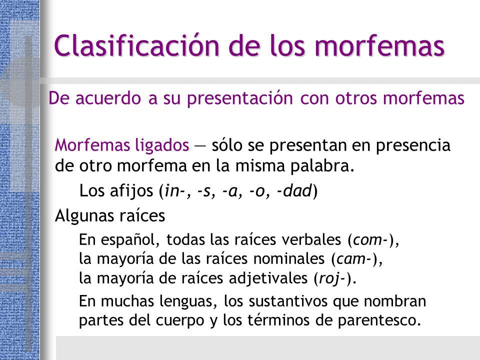 Morfemas ligados sólo se presentan en presencia de otro morfema en la misma palabra. Los afijos (in-, -s, -a, -o, -dad) Algunas raíces En español, tod