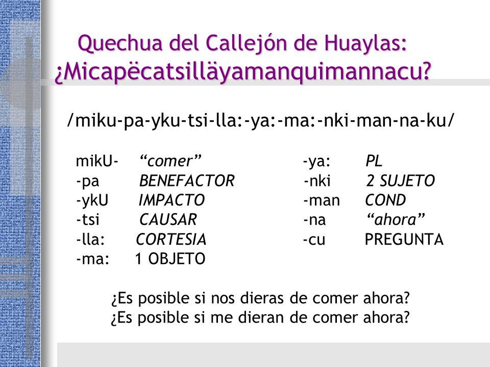 Quechua del Callejón de Huaylas: ¿Micapëcatsilläyamanquimannacu? /miku-pa-yku-tsi-lla:-ya:-ma:-nki-man-na-ku/ mikU- comer -ya: PL -pa BENEFACTOR -nki