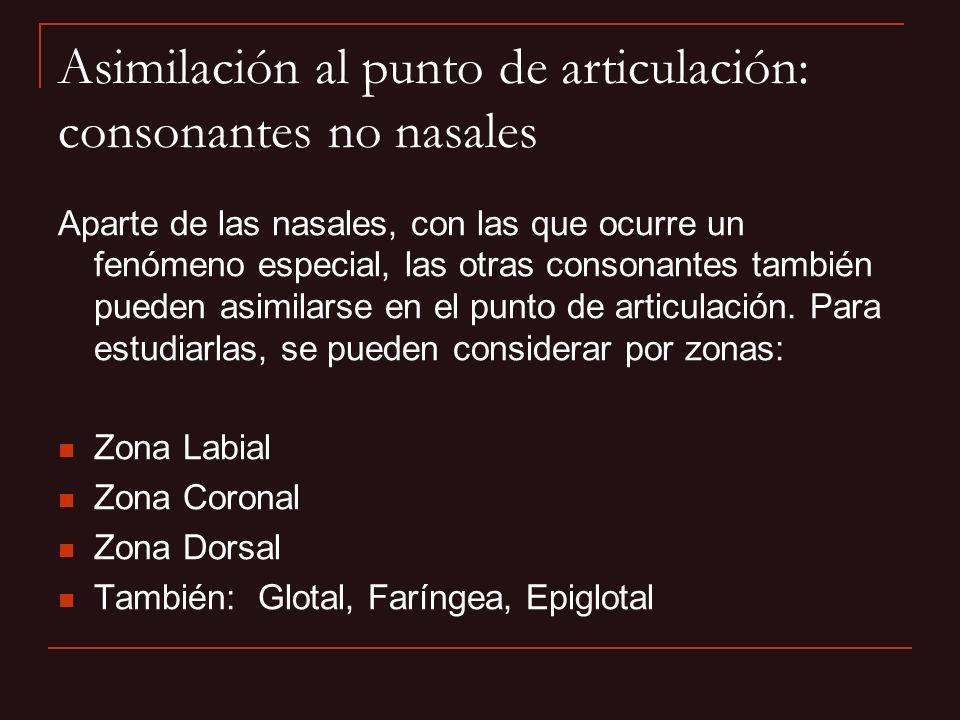 Asimilación al punto de articulación: consonantes no nasales Aparte de las nasales, con las que ocurre un fenómeno especial, las otras consonantes tam