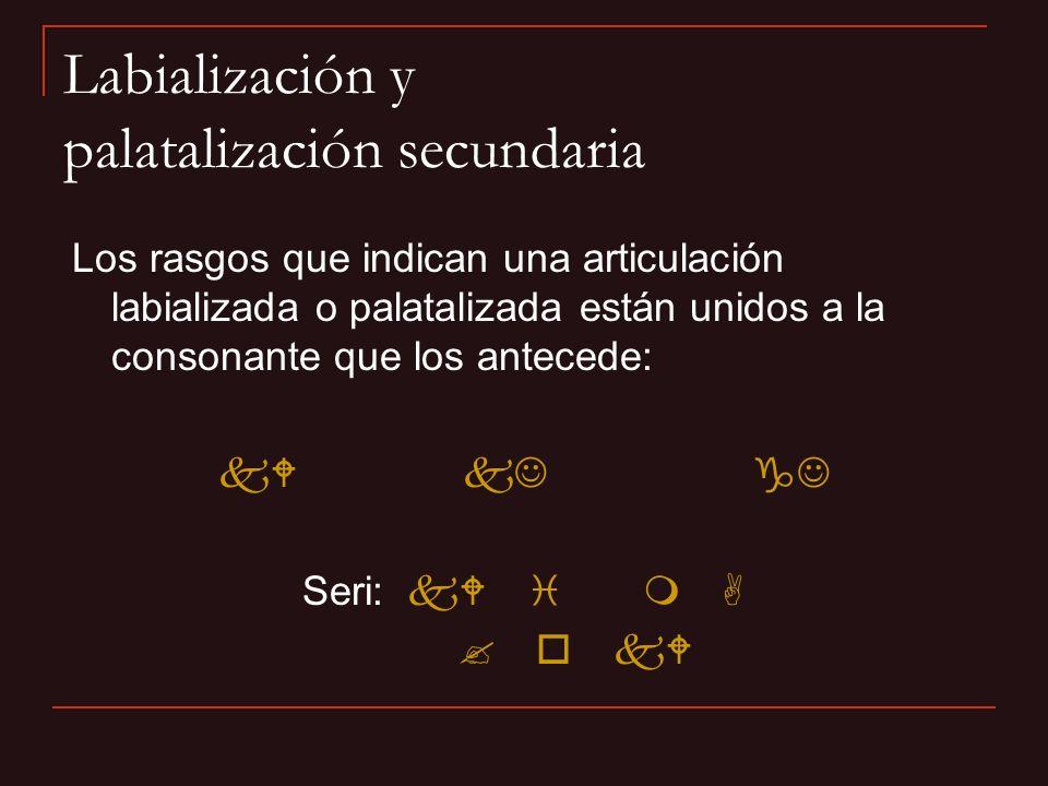 Labialización y palatalización secundaria Los rasgos que indican una articulación labializada o palatalizada están unidos a la consonante que los ante