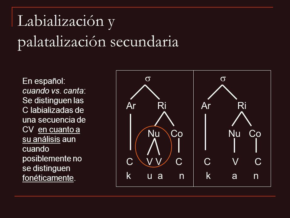 Ar Ri Nu Co Nu Co C V V C C V C k u a n k a n En español: cuando vs. canta: Se distinguen las C labializadas de una secuencia de CV en cuanto a su aná