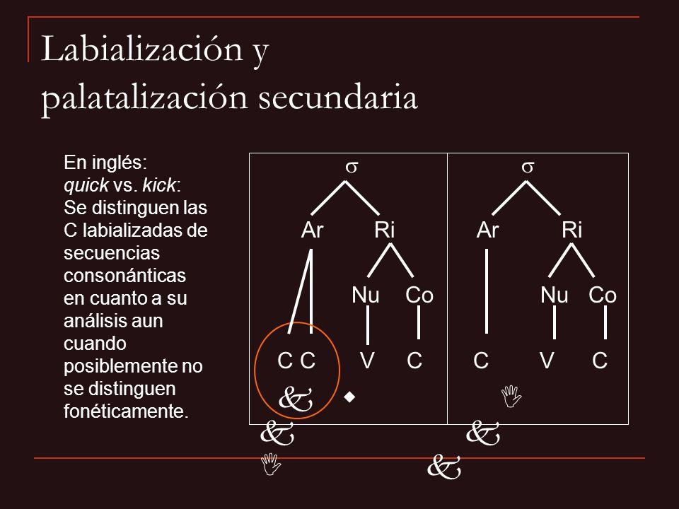 Ar Ri Nu Co Nu Co C C V C C V C k w I k k I k En inglés: quick vs. kick: Se distinguen las C labializadas de secuencias consonánticas en cuanto a su a