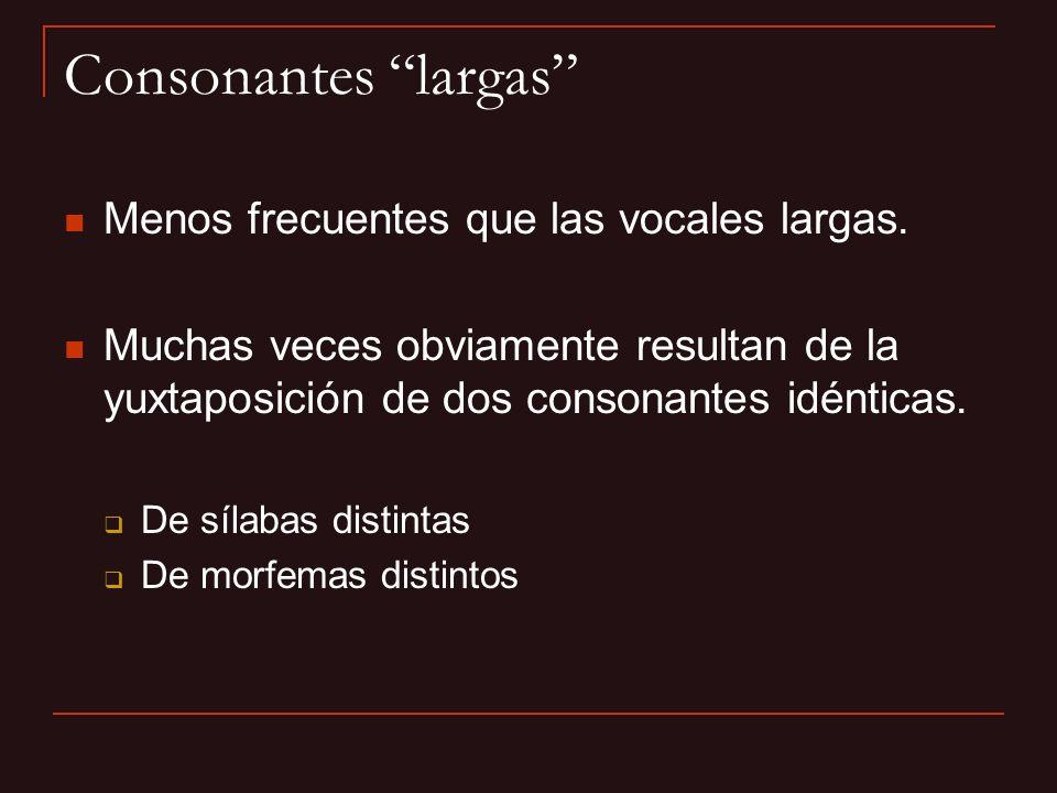 Consonantes largas Menos frecuentes que las vocales largas. Muchas veces obviamente resultan de la yuxtaposición de dos consonantes idénticas. De síla