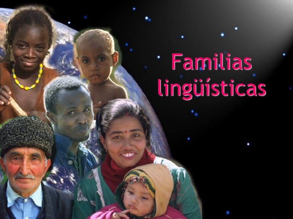 Técnicamente, una familia de lenguas es un grupo de lenguas de las que fácilmente se puede mostrar que tienen una relación genética al examinar la evidencia básica.