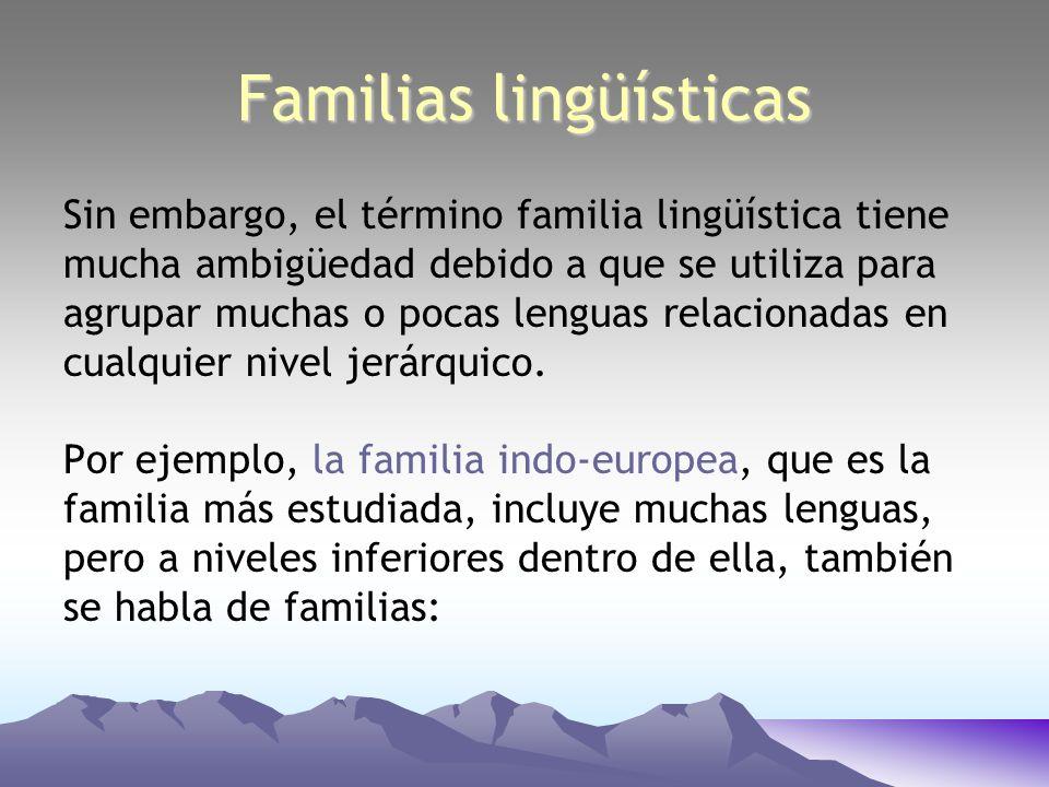 Sin embargo, el término familia lingüística tiene mucha ambigüedad debido a que se utiliza para agrupar muchas o pocas lenguas relacionadas en cualqui