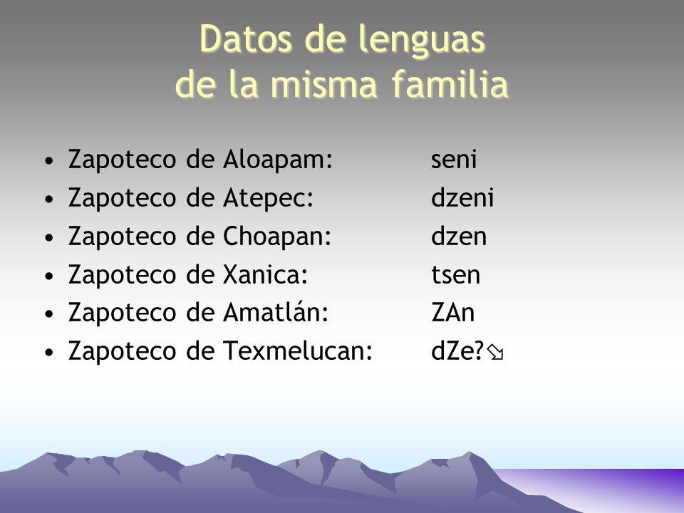 Datos de lenguas relacionadas, pero no de la misma familia una lengua zapoteca: tsen una lengua mixteca: juhmA una lengua chinanteca: i una lengua popoloca:i?ntSi una lengua otopame:hmifi