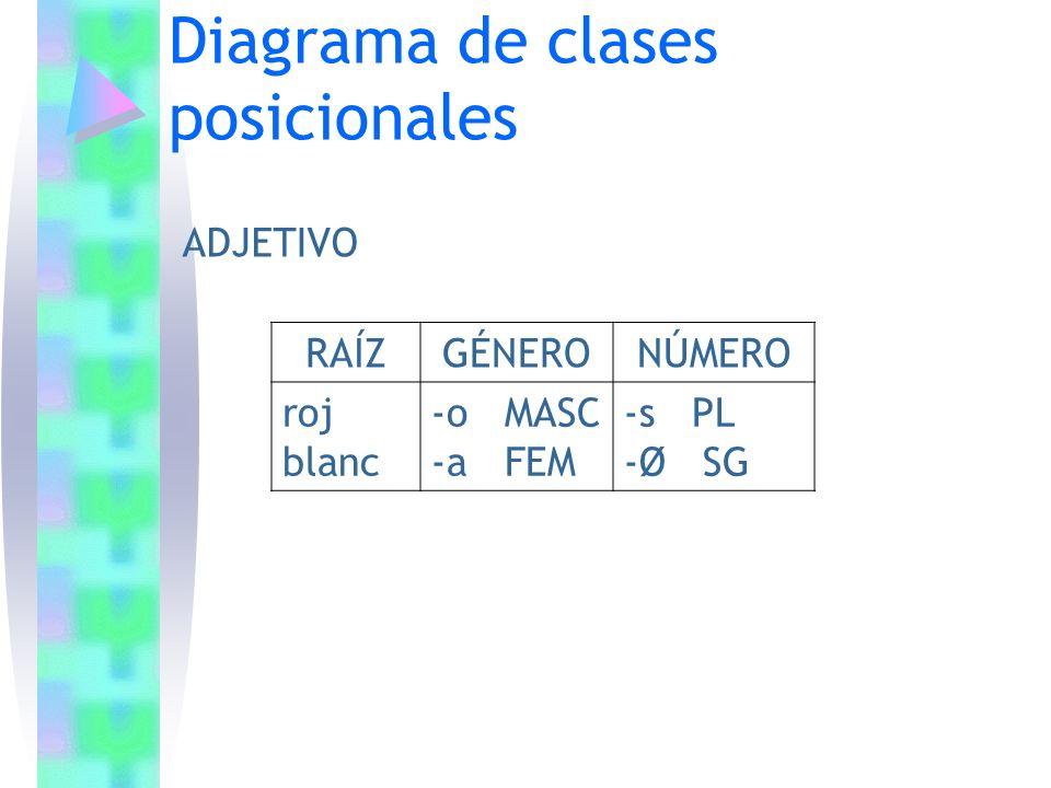 Diagrama de clases posicionales RAÍZGÉNERONÚMERO roj blanc -o MASC -a FEM -s PL -Ø SG ADJETIVO