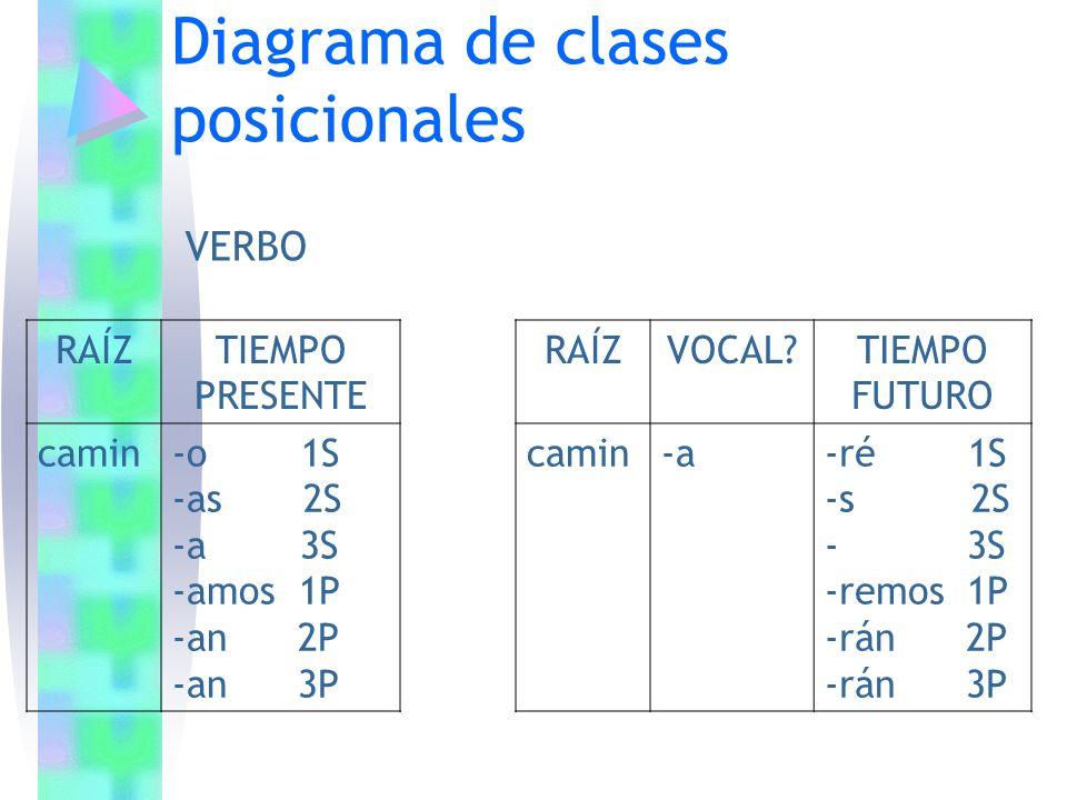 Diagrama de clases posicionales RAÍZTIEMPO PRESENTE camin-o 1S -as 2S -a 3S -amos 1P -an 2P -an 3P VERBO RAÍZVOCAL?TIEMPO FUTURO camin-a-ré 1S -s 2S -