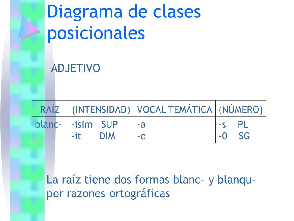 Diagrama de clases posicionales RAÍZ(INTENSIDAD)VOCAL TEMÁTICA(NÚMERO) blanc- -isim SUP -it DIM -a -o -s PL -0 SG ADJETIVO La raíz tiene dos formas bl