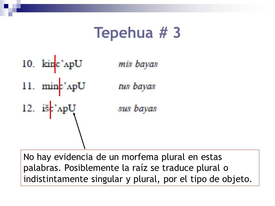 No hay evidencia de un morfema plural en estas palabras. Posiblemente la raíz se traduce plural o indistintamente singular y plural, por el tipo de ob