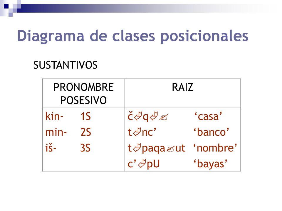Diagrama de clases posicionales PRONOMBRE POSESIVO RAIZ kin- 1S min- 2S iš- 3S č q casa t nc banco t paqa ut nombre c pU bayas SUSTANTIVOS